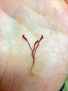 Image of Saffron full thread